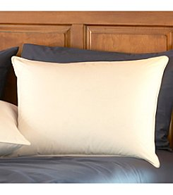 Pacific Coast® Restful Night® Premium Down Pillow