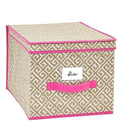 ClosetCandie Hot Pink Medium Storage Box
