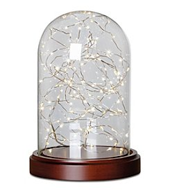 Glass Cloche with 20ft LED String Lights
