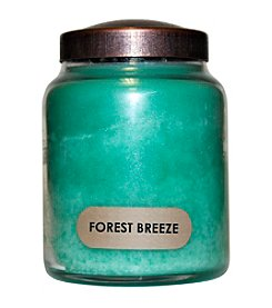 A Cheerful Giver 6-oz. Forest Breeze Candle