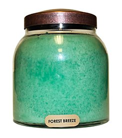 A Cheerful Giver Forest Breeze 34-oz. Papa Jar Candle