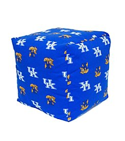 NCAA® Kentucky Wildcats Cube Cushion
