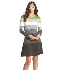 Jessica Howard® Petites' Space Dye Stripe Sweater Dress