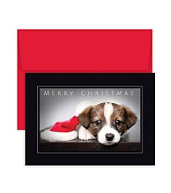 Masterpiece Studios Christmas Puppy Boxed Holiday Greeting Cards