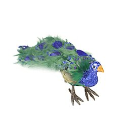 Colorful Green Regal Peacock Bird with Closed Tail Feathers and Purple Gemstones