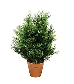Potted Two-Tone Artificial Cypress Plant
