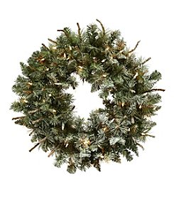 Nearly Natural® Lighted Frosted Pine Wreath