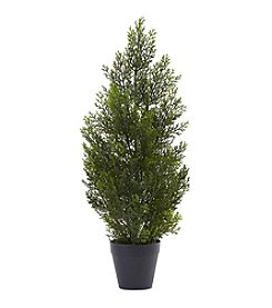 Nearly Natural® 2' Mini Cedar Pine Tree