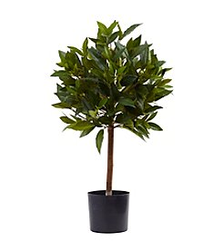 Nearly Natural® Sweet Bay Mini Ball Topiary Tree