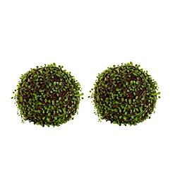 Nearly Natural® Set of 2 Mohlenbechia Ball