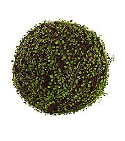 Nearly Natural® Mohlenbechia Ball
