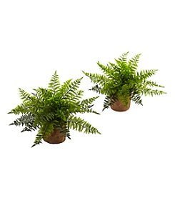 Nearly Natural® Set of 2 Ruffle Fern Bush with Burlap Base