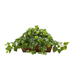 Nearly Natural® Pothos with Ledge Basket