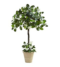 Nearly Natural® Stephanotis Topiary with Planter