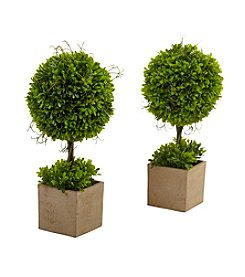 Nearly Natural® Set of 2 Boxwood Topiary with Planter
