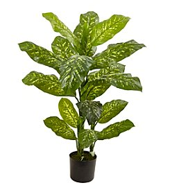 Nearly Natural® Dieffenbachia Plant