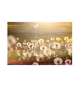 Parvez Taj Field Art Print on Premium Canvas