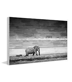 Parvez Taj Elephant Art Print on White Pine Wood