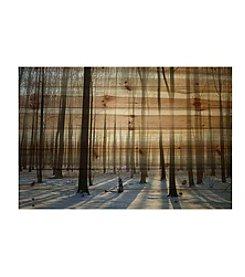 Parvez Taj Papineau Art Print on Natural Pine Wood
