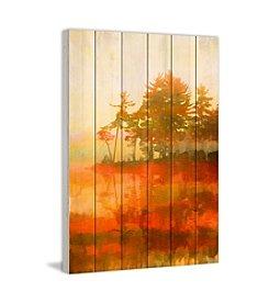Parvez Taj Kamloops Art Print on White Pine Wood