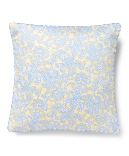 Paisley and Stripe Decorative Pillow
