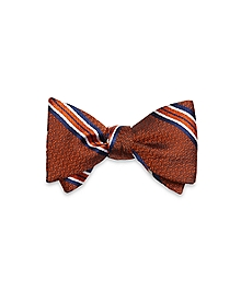 Framed Stripe Bow Tie