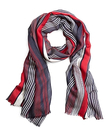 Navy and Red Multistripe Scarf
