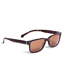 Brooks Brothers Plastic Wayfare Sunglasses