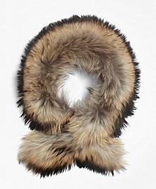 Raccoon Collar