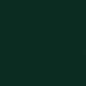 SENSUEDE EVERGREEN