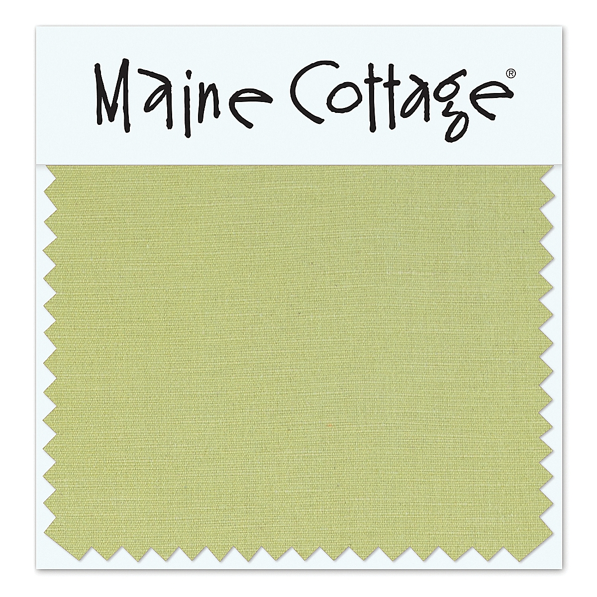 Coastal Cotton: Key Lime (swatch card)