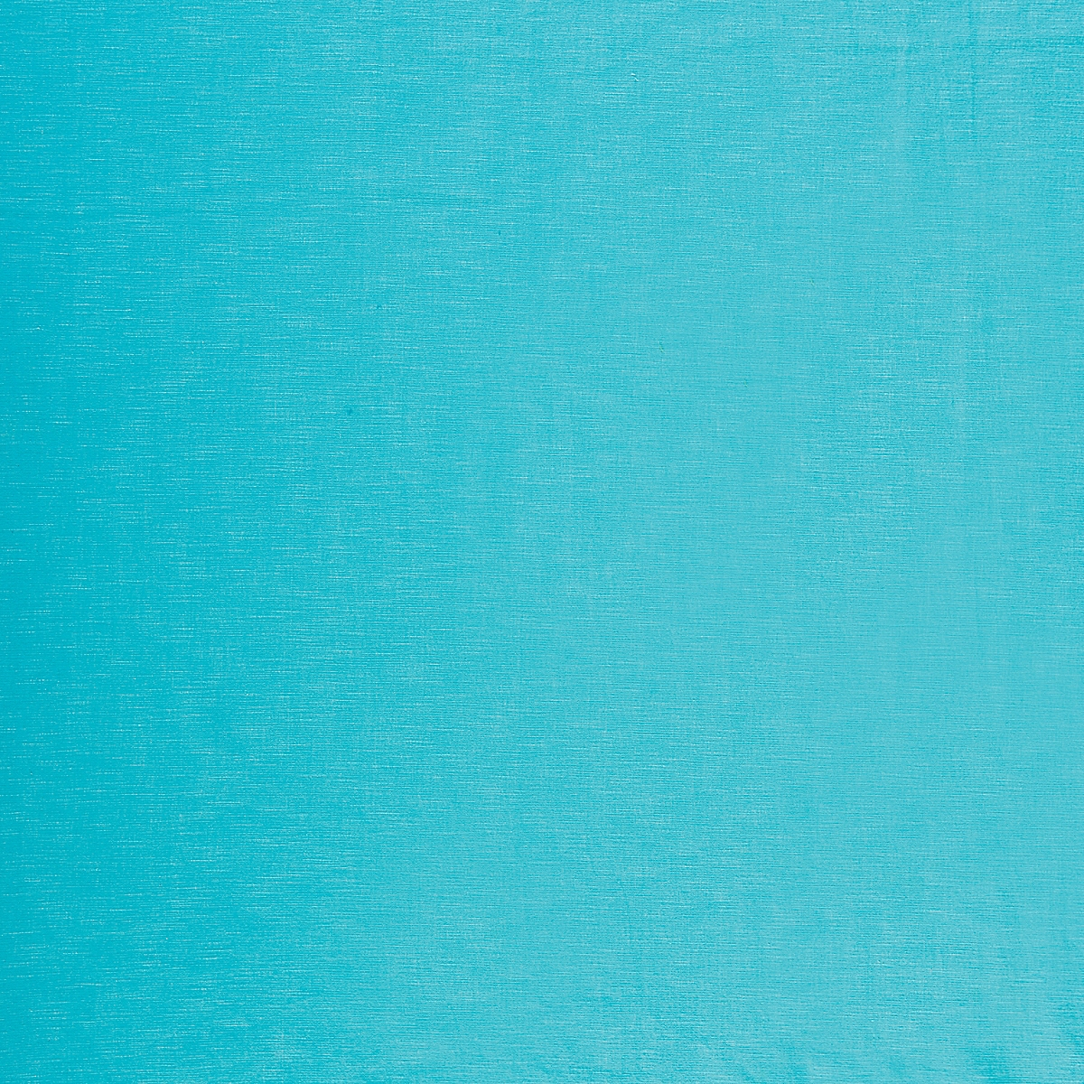 Coastal Cotton: Aqua (fabric yardage)