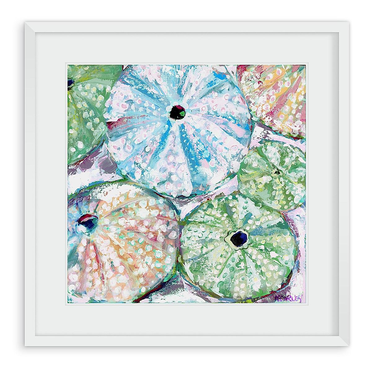 Ocean Urchins