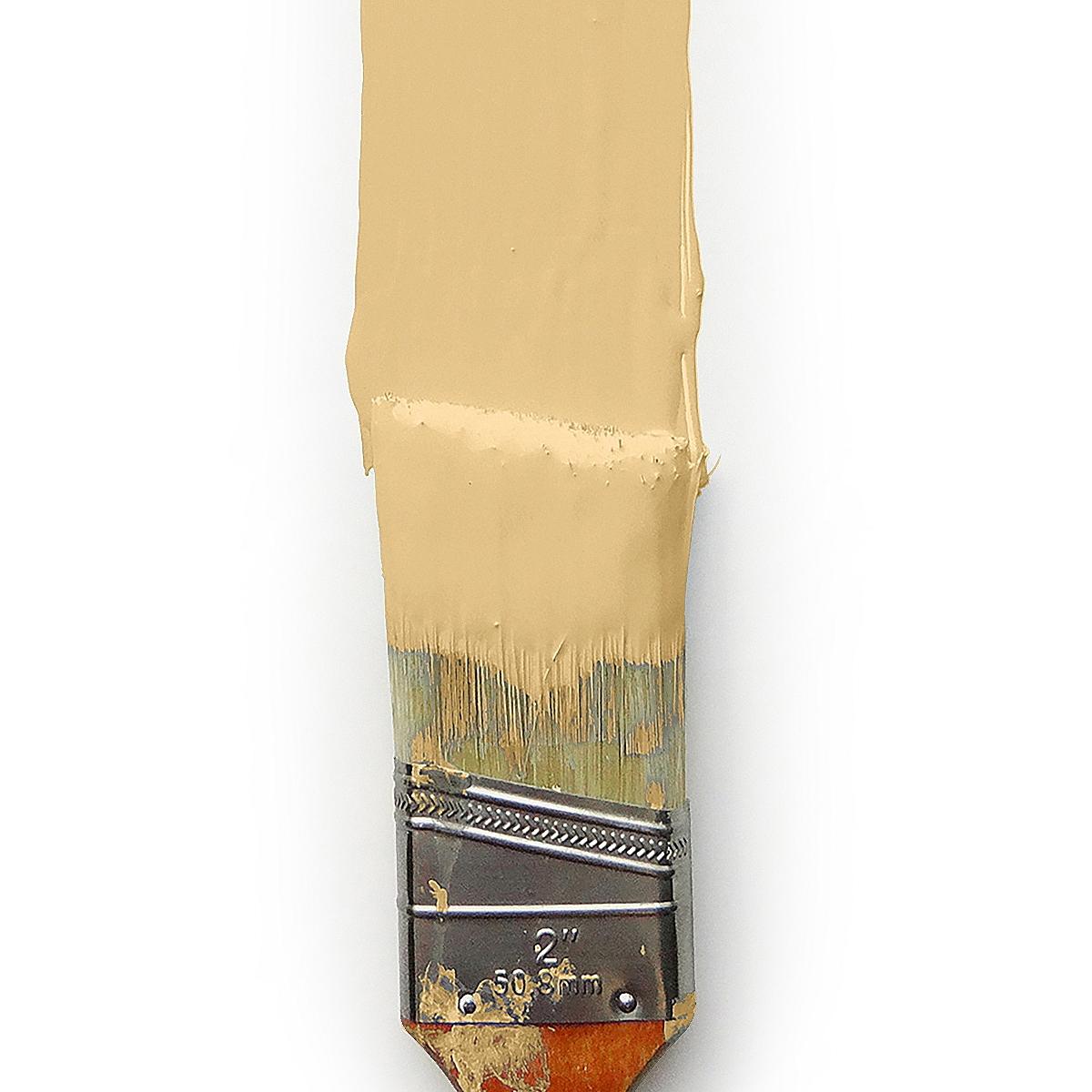 Butter Wall Paint