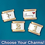 Individual Charming Touches Personalized Birthstone Italian Link Charm Bracelet