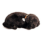 Black Lab Perfect Petzzz Lifelike Plush