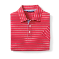 Sidney Stripe Polo