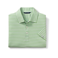 Elliott Stripe Polo