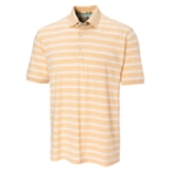 Woodlawn Stripe Polo