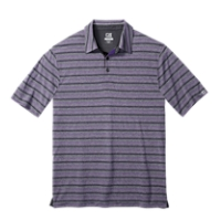 CB DryTec Distinguished Stripe Polo