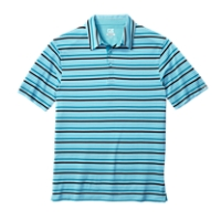 CB DryTec Trail Stripe Polo