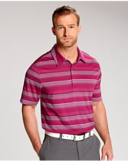 Force Stripe Polo