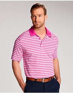 Newton Stripe Polo