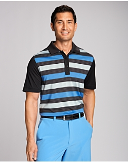 Perspective Stripe Polo