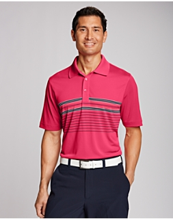 Destination Chest Stripe Polo