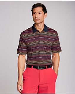 Reprieve Stripe Polo