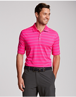 B&T S/S Friday Harbor Stripe Polo