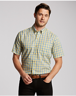B&T S/S Wrinkle Free Luis Ray Check