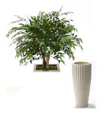 3' Ruscus Tree in White Earthenware Highland Floor Planter