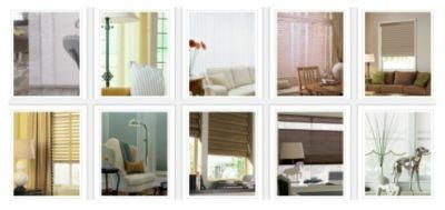 Levolor Brand Blinds